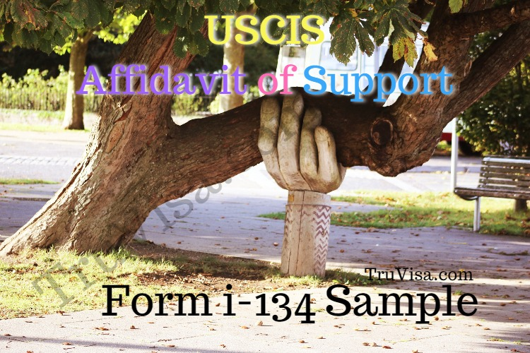 How To Fill Uscis Form I 134 Affidavit Of Support Pre Filled