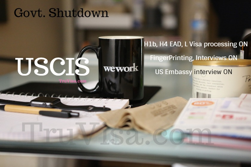 Does USCIS stop working on H1B visa, H4 EAD petitions in